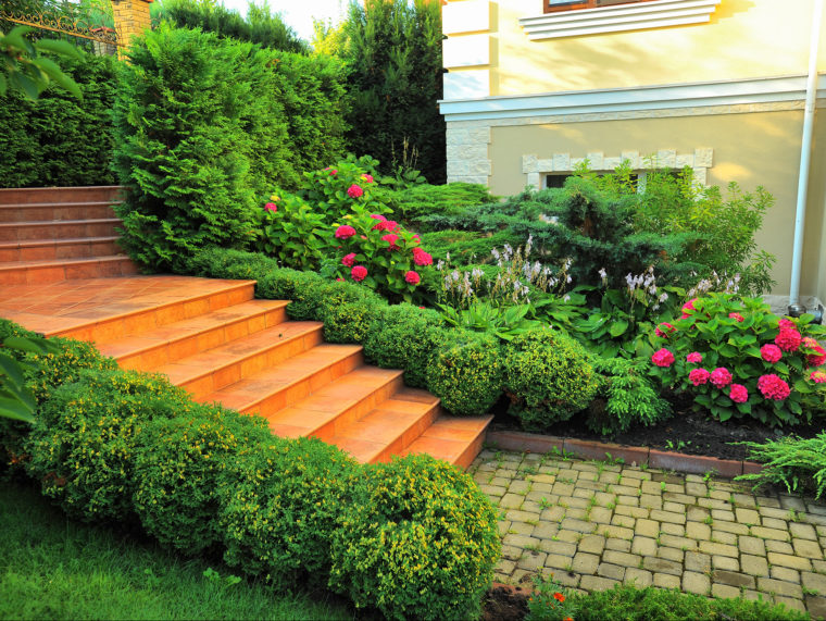 Lawn & Garden Care